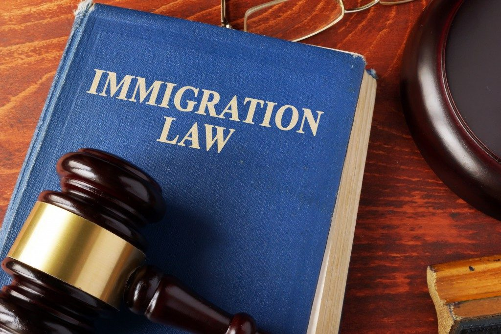 a book of immigration law